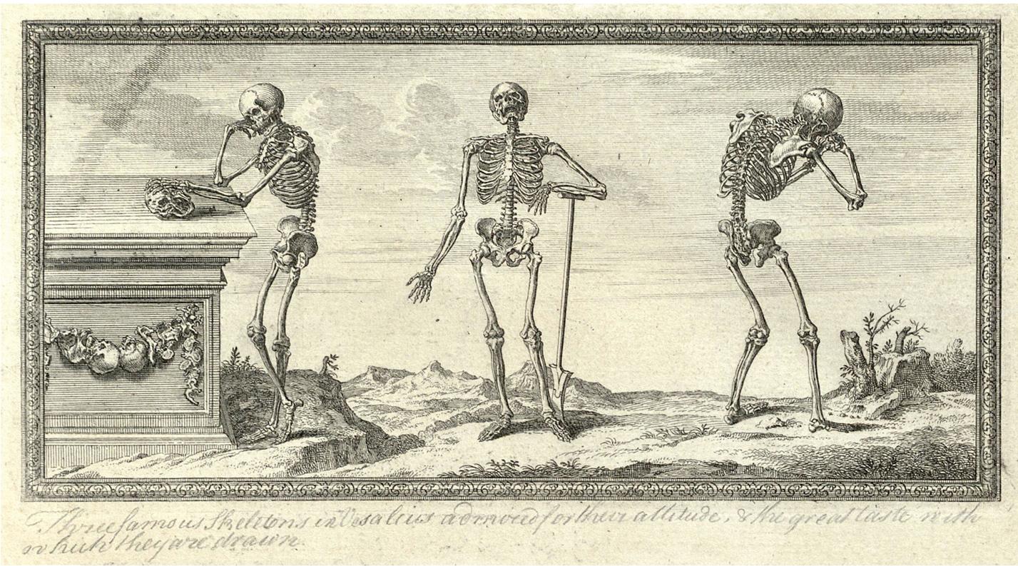 Morbid Anatomy: New York Academy of Medicine Festival of Medical ...