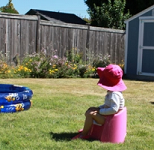 potty training backyard