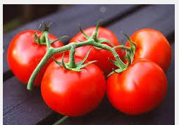 Manfaat Buah Tomat Yang Harus Anda Ketahui