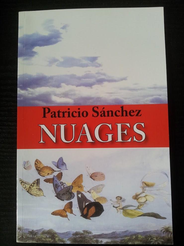 Patricio SANCHEZ, Nuages, Obsidiana, 2008.