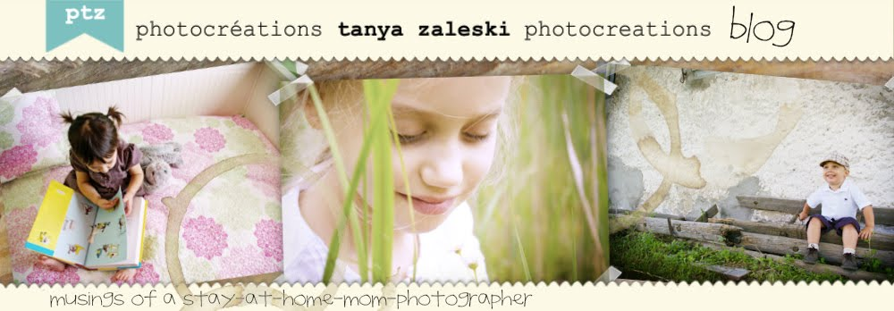tanya zaleski photocreations blog