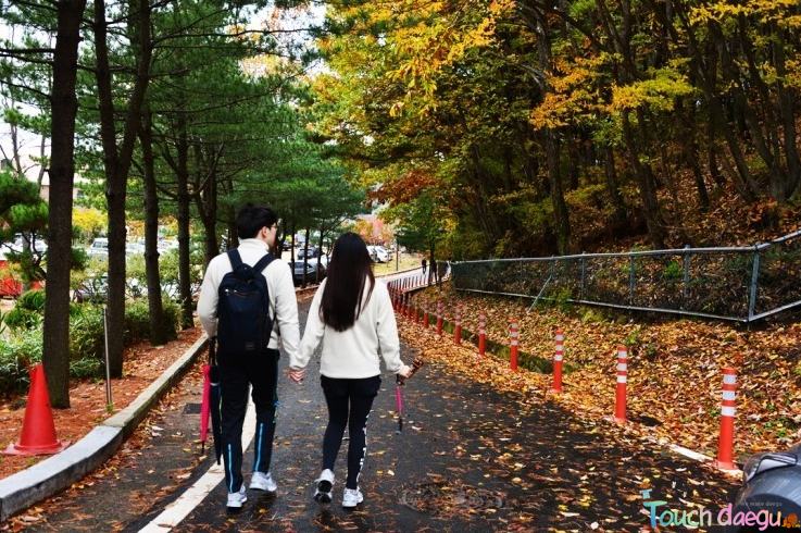 A couple date in the autumn leaves festival in Mt. Palgong