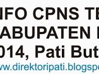 Lowongan CPNS Terbaru, Inilah Rincian Formasi CPNS Pati untuk Guru