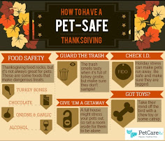 How to have a Pet-Safe Thanksgiving