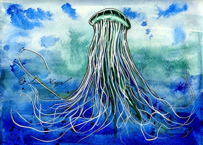 https://www.etsy.com/listing/213230533/emperor-jellyfish-print