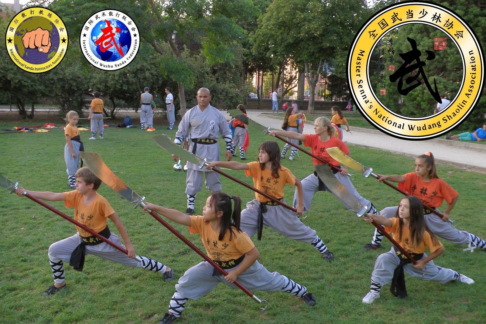 Kung Fu Wushu Alcala de Henares, Shaolin Kung fu, Cursos y Clases, Maestro Senna.