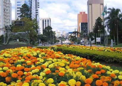 O Centro Cívico, além da excelente localização! É um dos bairros mais funcionais de Curitiba...