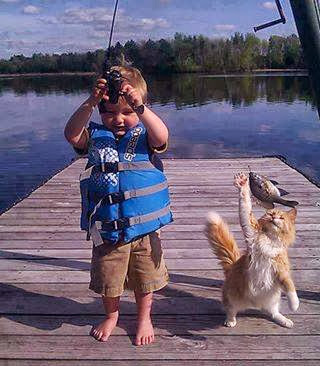 Naughty Little Kid and Naughty Pet Cat