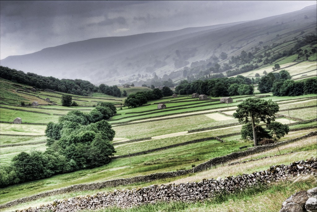 swaledale guys Swaledale woollens, muker: see 9 reviews, articles, and photos of swaledale woollens on tripadvisor.