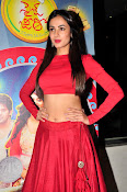 Sonal Chauhan Sizzling at Size Zero Premier-thumbnail-3