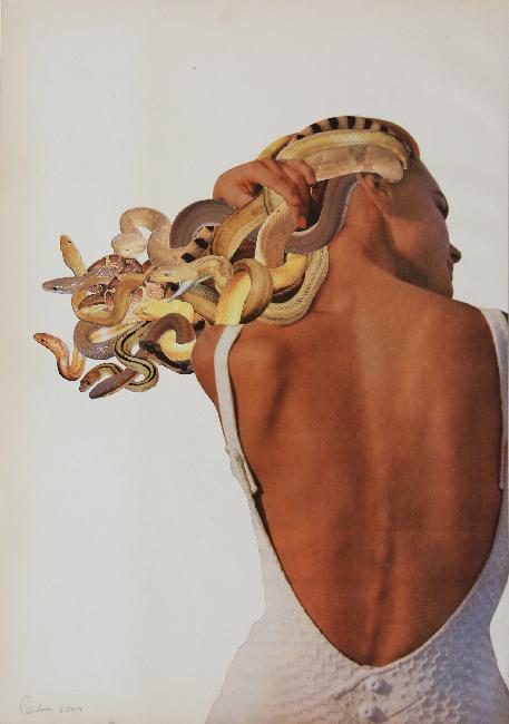 Doctor Ojiplático. Javier Piñon. Medusas