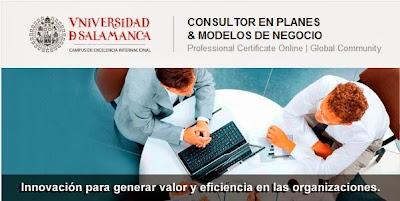 Consultor en planes y modelos de negocios
