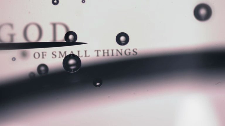 God of the Small Things Book Cover