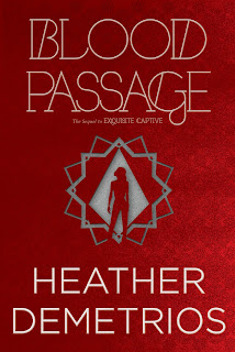 Blood Passage book cover
