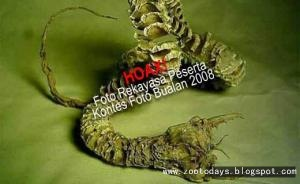 Inilah Foto hoaxnya - [www.zootodays.blogspot.com]