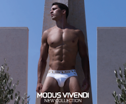 Parceria Modus Vivendi