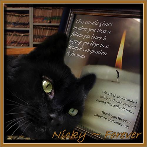 RIP NICKY