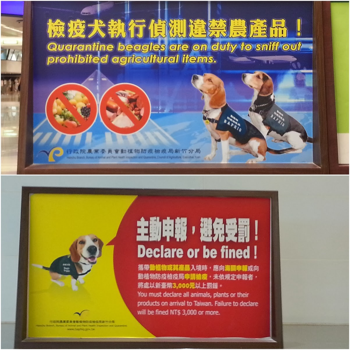Dog friendly signs reminding the visitors to declare before walking out from Taoyuan International Airport Arrival in Taipei, Taiwan