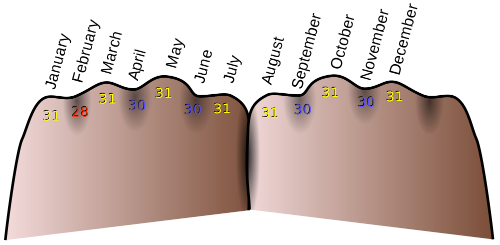 The easiest way remember number of days in each month  using knuckles