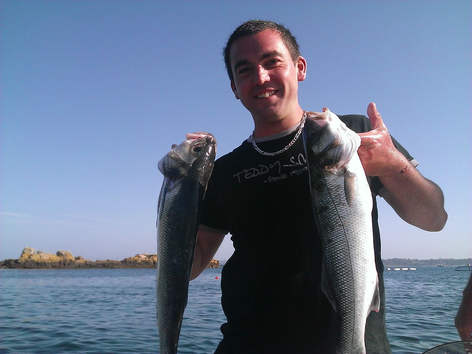 Labrax, pêche, black minnow