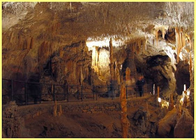 Cuevas Postojna