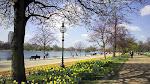 Scopri i parchi di Londra