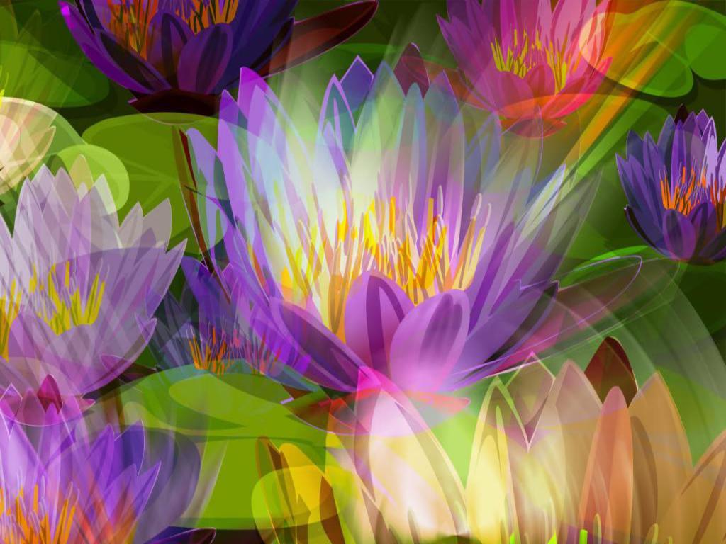 http://1.bp.blogspot.com/-m0WP8PCqk-c/TV_Dn6gsjKI/AAAAAAAABZ4/PpAOLECT4DU/s1600/lotus%2Bwallpaper.jpg