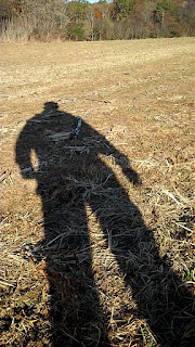 shadow wheat field
