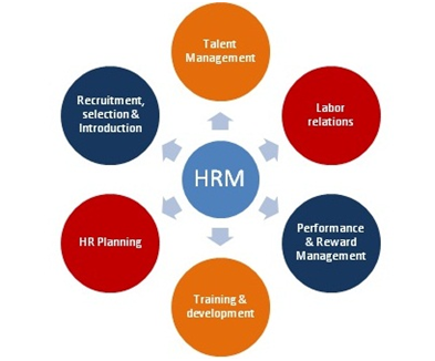 Skills Reqirements for HR Manager