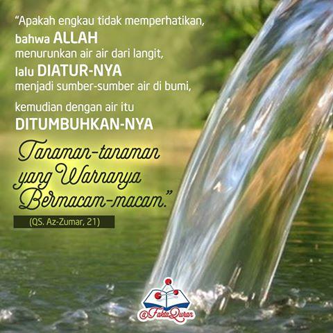 FaktaQuran11