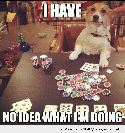 Funny poker pics
