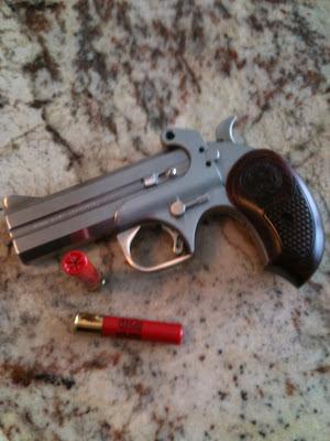 Zombie Apocalypse Survivor: Bond Ams Snake Slayer Gun