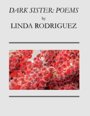 My newest book, DARK SISTER: POEMS. Click on cover image to buy.