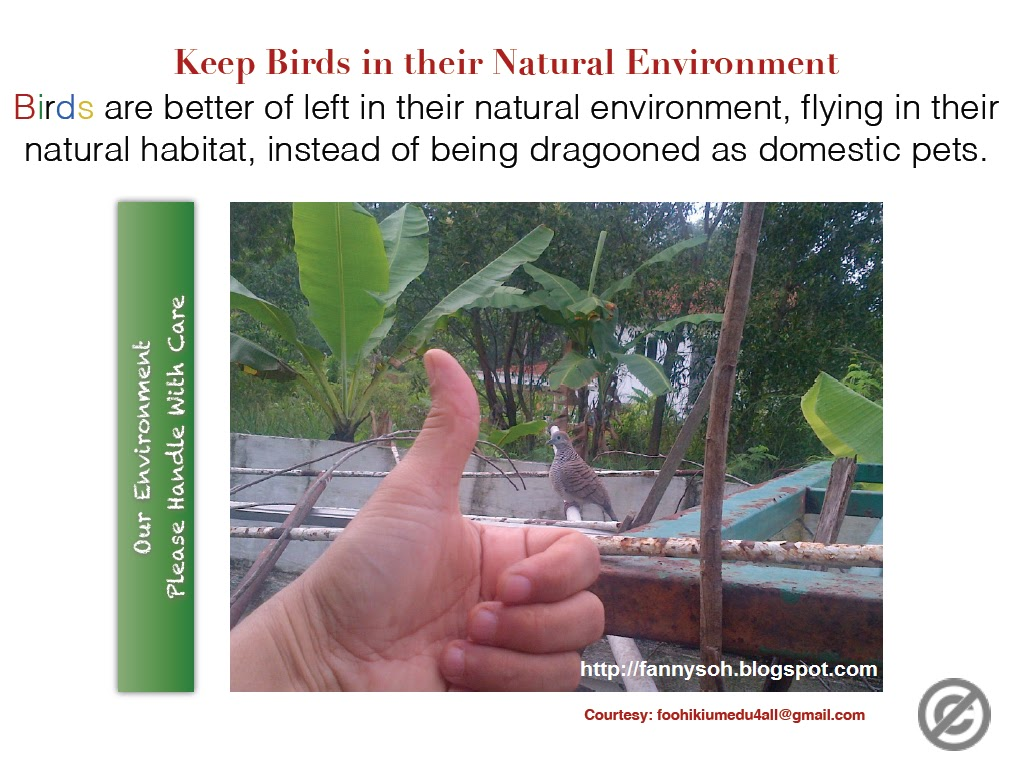 physical environment in malaysia Environment means the physical factors of the surroundings of the human beings including land, water, atmosphere, climate, sound, odour, taste, the biological factors of animals and plants and the social factor.
