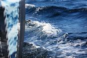 Vågorna svallar
