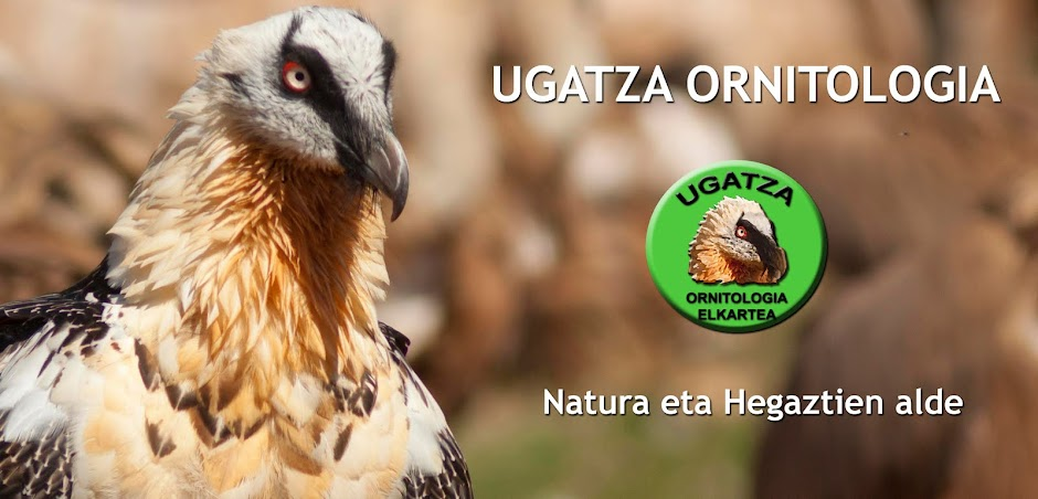 Sociedad de Ornitología Ugatza Ornitologia Elkartea