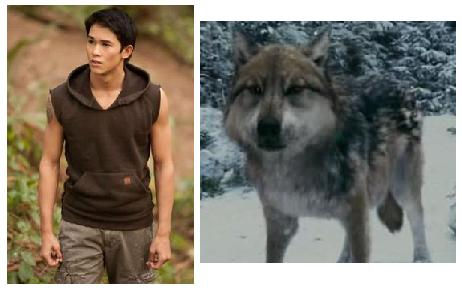 : June 2012 Twilight Wolf Pack Seth
