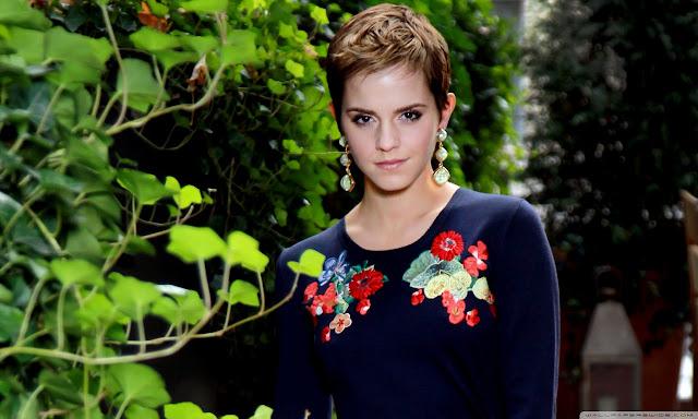 "<img src=""http://1.bp.blogspot.com/-m1ta-ppPIyk/Uf_Pn-gz9cI/AAAAAAAADOw/0UgA5jPI8Sk/s1600/emma_watson_15-wallpaper-1280x768.jpg"" alt=""Emma Watson wallpaper"" />"