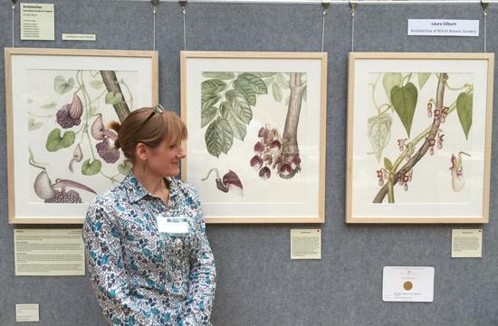 Aristolochias of British Botanic Gardens by Laura Silburn GM