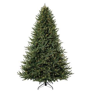 Xmas Tree Images