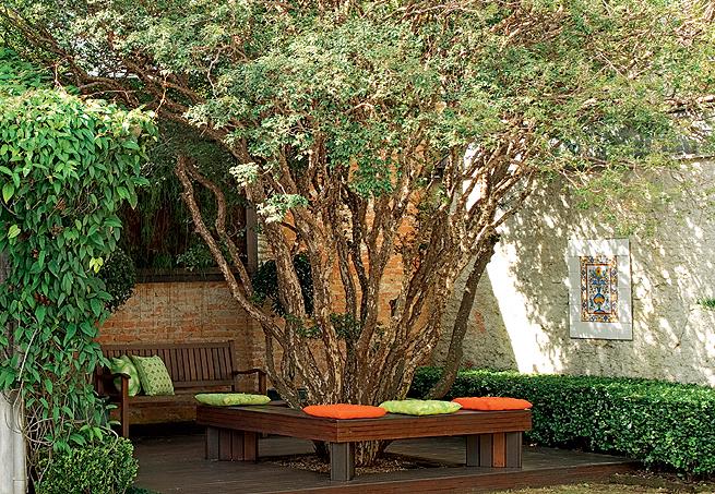 ipe de jardim arvore : ipe de jardim arvore:Bru Decor Casa: Árvore no jardim