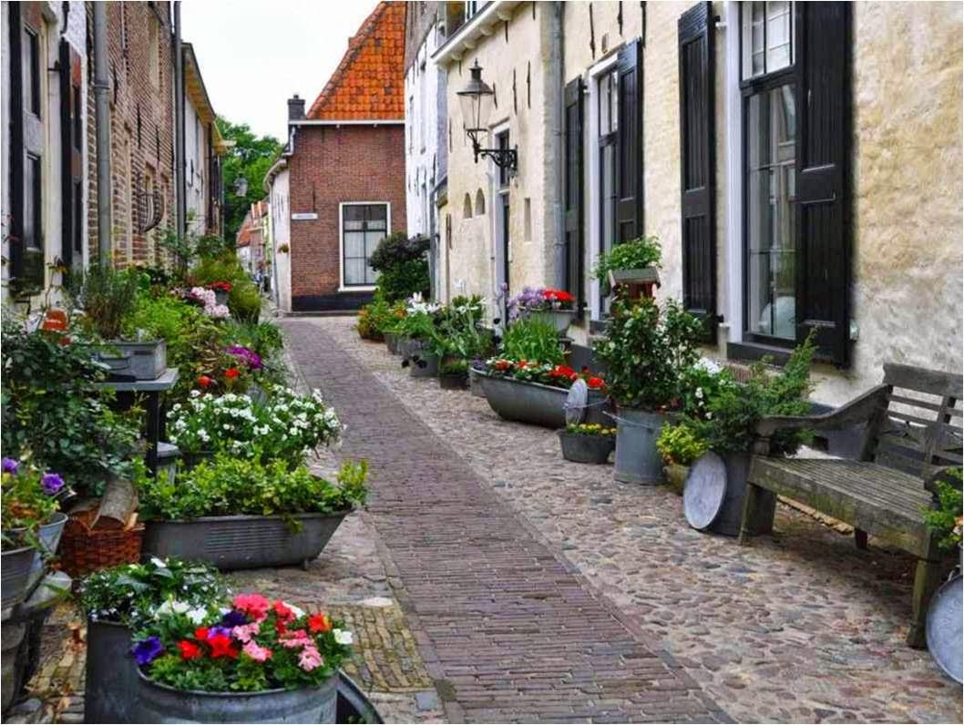 http://www.chezjoeline.com/app/download/9993703795/Pays-Bas+-+IJsselmeer+-+Oost+..+19+01+2015.pps?t=1421605886