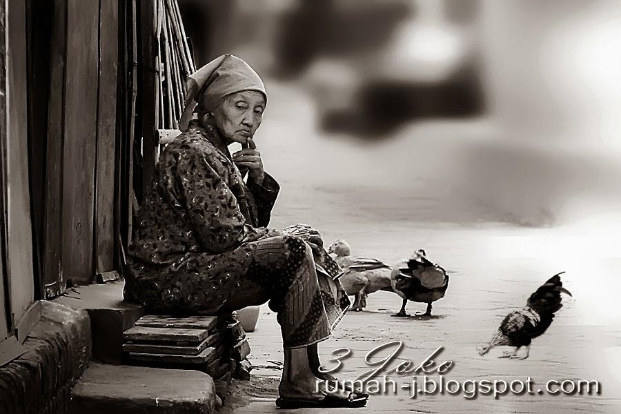 Foto ini diambil belakang pasar Niten, Bantul Jogjakarta, dengan jarak pengambilan sekitar 30 meter dari obyek.