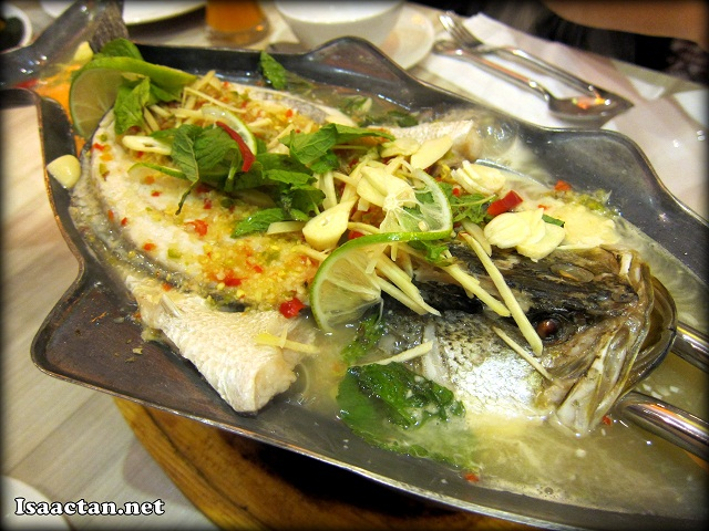 Steamed Siakap with Lime and Chilli Sauce