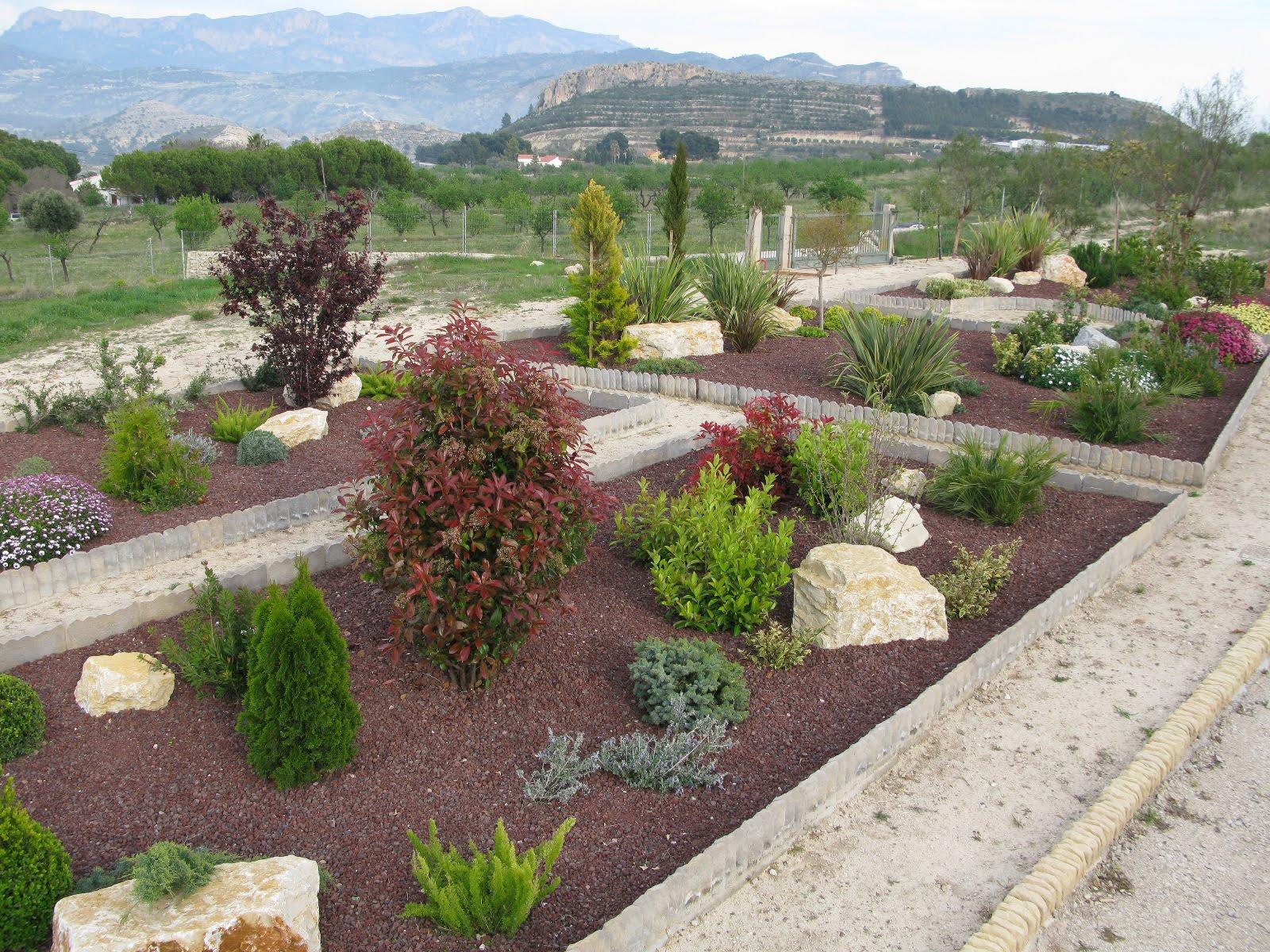 Jard n mediterraneo monta a jardiner a benidorm for Diseno jardin mediterraneo