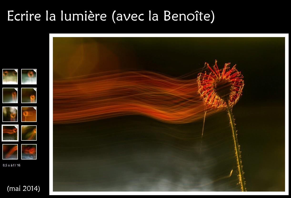 http://instantalautre.free.fr/galeries2014/art/benoite/