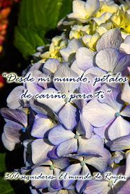 http://elmundoderayen.blogspot.com/