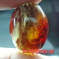 Batu Akik Badar Lumut Merah