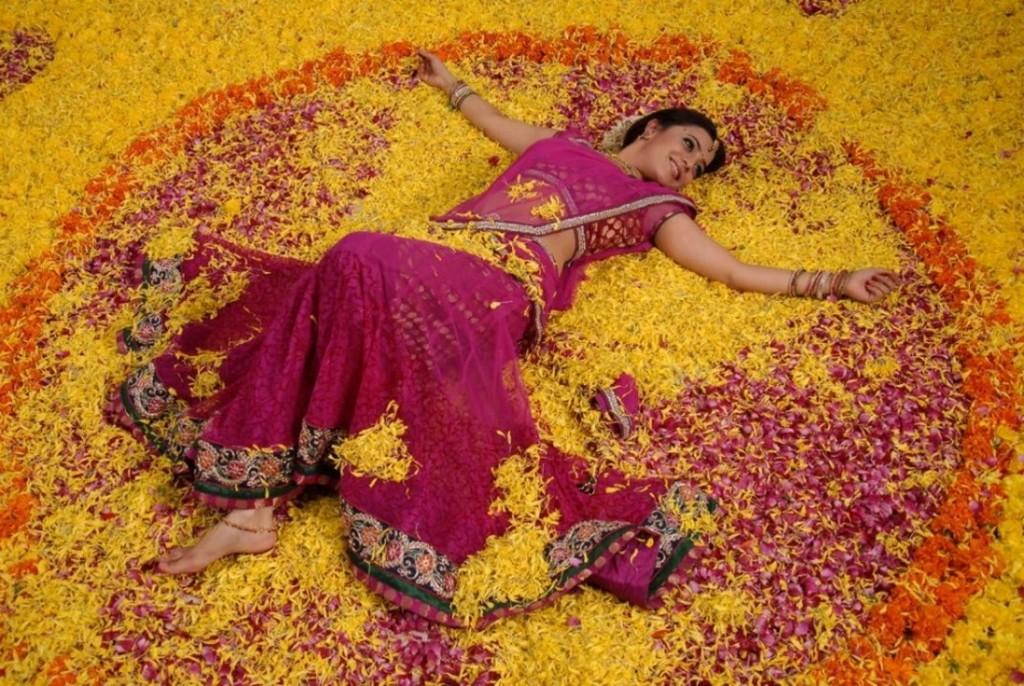 Nisha Agarwal in saree, Nisha Agarwal legs
