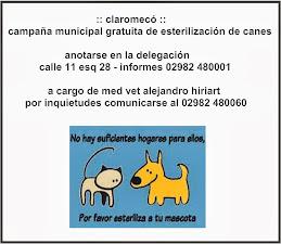 claromecó, campaña de esterilización de canes